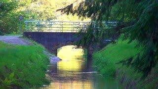 Le canal d'alimentation du lac de Bouzey