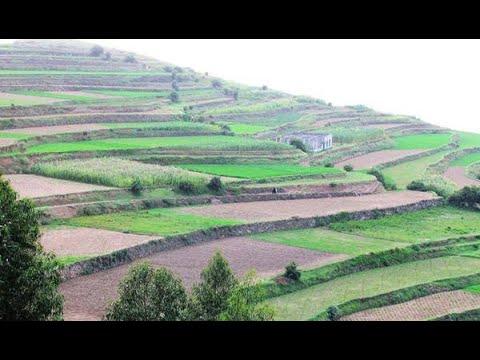 فن بناء المدرجات الزراعية الذي اشتهرت به اليمن (18-10-2019)