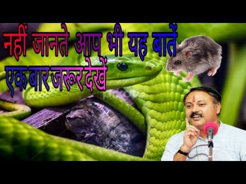 Amazing facts of snake, рд╕рд╛рдВрдк рдХреА рддрд░рд╣ рдЙрдкрд╡рд╛рд╕ рд░рдЦреЛрдЧреЗ рддреЛ рдХрднреА рдмреАрдорд╛рд░ рдирд╣реАрдВ рдкрдбрд╝реЛрдЧреЗ#rajiv dixit