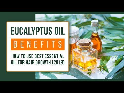 eucalyptus-oil-benefits-for-skin-and-hair-|-nilgiri-oil-uses-(2019)