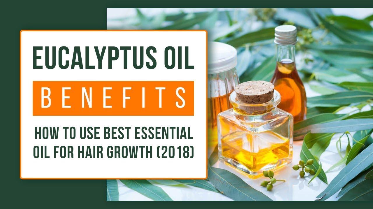 Eucalyptus Oil Benefits Best Essential Oil For Hair Growth 2018