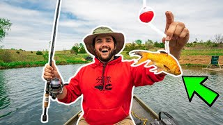 Fishing with GIANT LIVE GOLDFISH in My BACKYARD POND!!! (Surprise Catch)