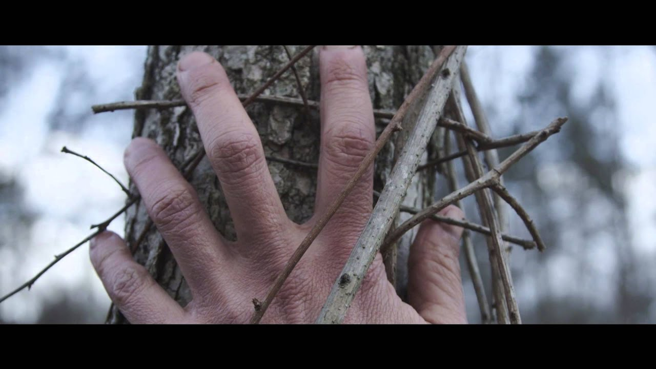 diane-cluck-sara-official-video-dianecluckvideo