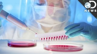 Can The Herpes Virus Kill Cancer?