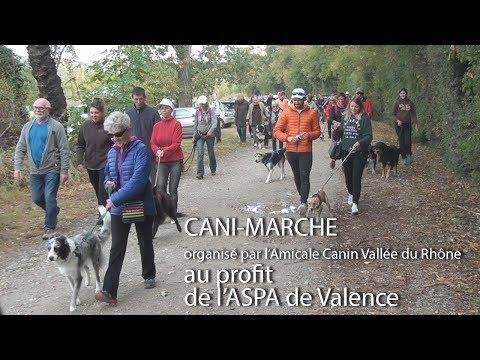 2017 10 01 Locale à la Une   Cani marche au profit de l'ASPA de valence organisé par l'Amicale canin