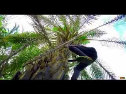 Download Minayo   Kankwambale Club Mixx