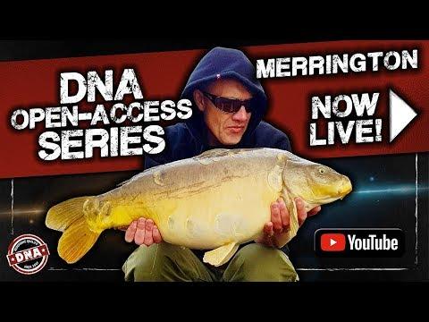 ***CARP FISHING*** DNA Open-Access Series: Merrington Carp Fishery