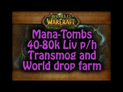 Mana-Tombs 40-80k LiV p/h Transmog and World drop farm TBC