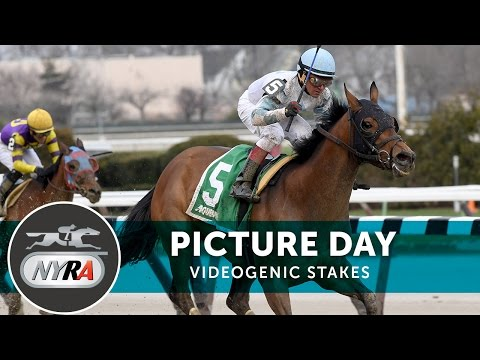 Picture Day - 2017 Videogenic Stakes