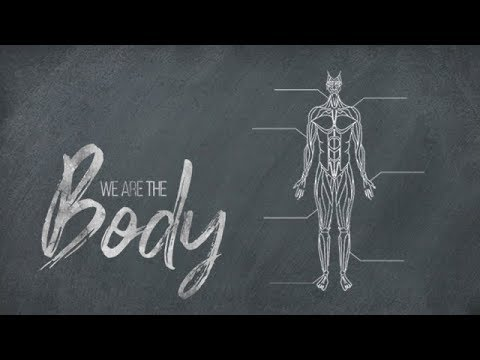 03.29.20 We Are the Body