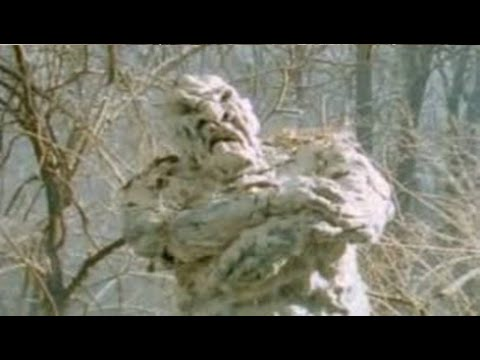 Top Cryptids You've Never Heard Of