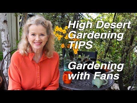 HIGH DESERT GARDENING TIPS | Wood Chips | Urban Gardening with Fans Part 1 | Vlog