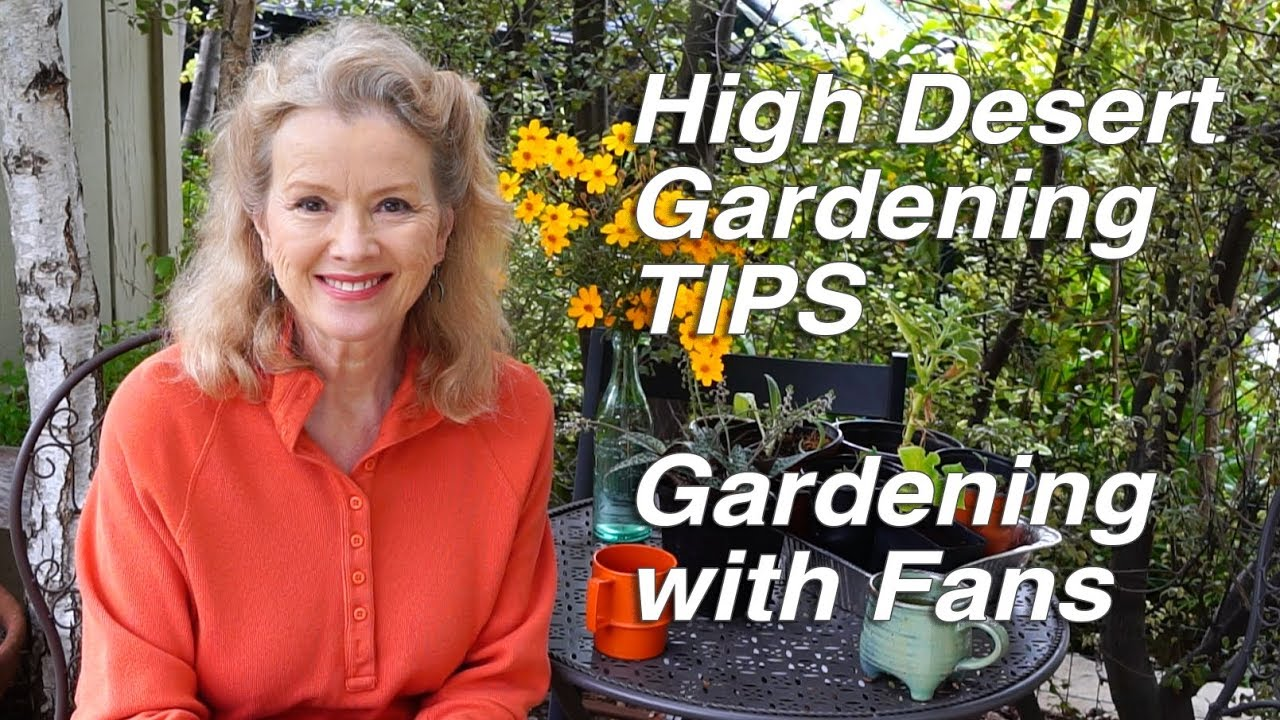 High Desert Gardening Tips Wood Chips Urban Gardening With