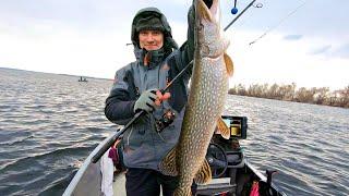 Рыбалка на весеннюю щуку Открытие спиннингового сезона 2021