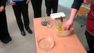 Мы смотрим химические опыты на уроке окружающего мира. Учитель химии Ефимова Галина Михайловна.