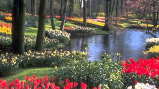 Rachmaninov / Piano Concerto No.3 Op.30 / Allegro ma non tanto