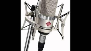 micro Speech test Neumann TLM 103 Brauner Phantera Neumann U87 ai Neumann TLM 102 Se Electronics T2