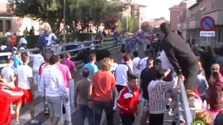 Tercer Encierro Medina del Campo 2013 - San Antolín 6 de Septiembre