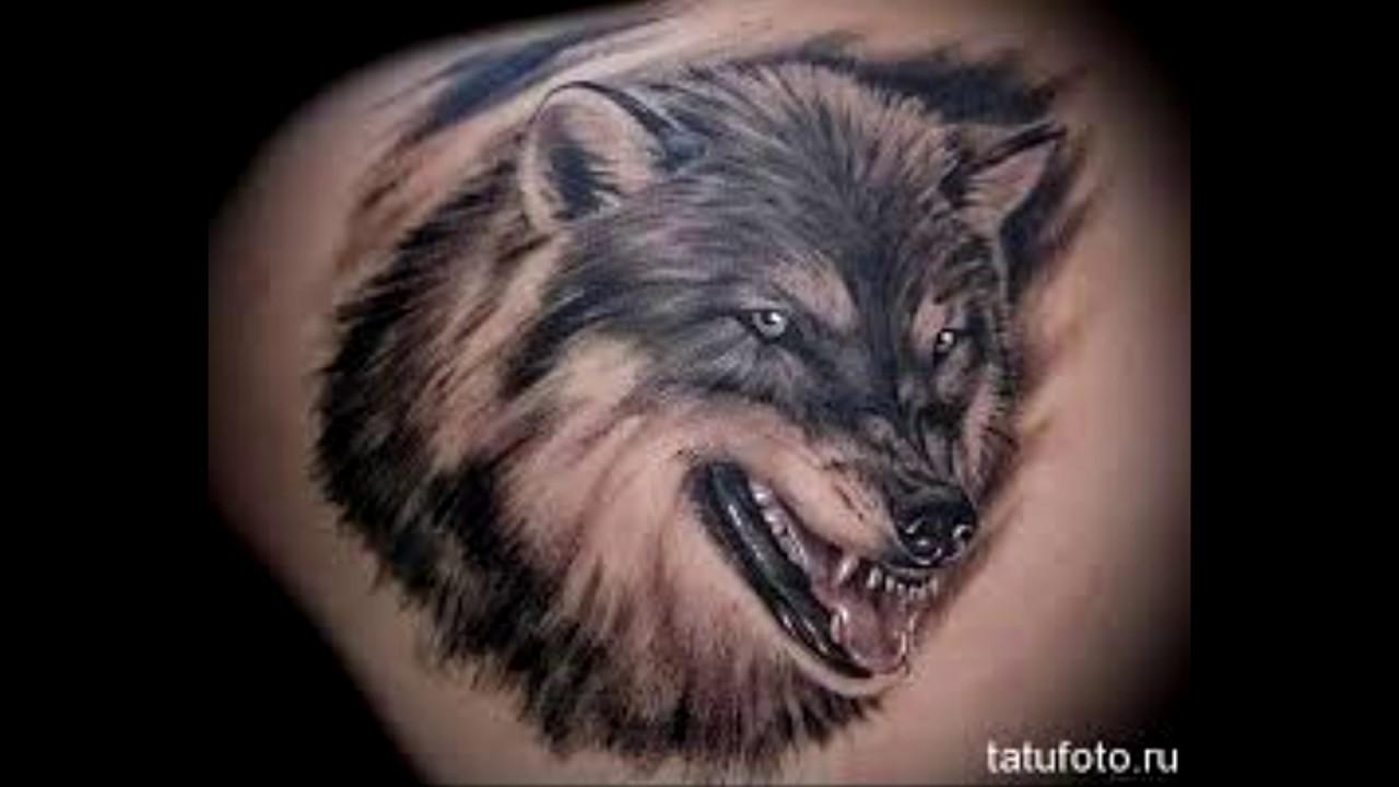 татуировки волков фото