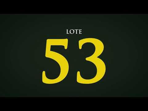 LOTE 53   CSCQ 265
