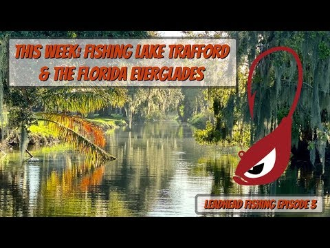 Lake Trafford And The Florida Everglades BASS FISHING ADVENTURE