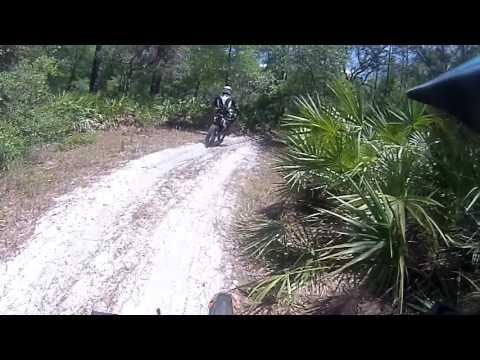 Tao Tao 110cc dirt bike