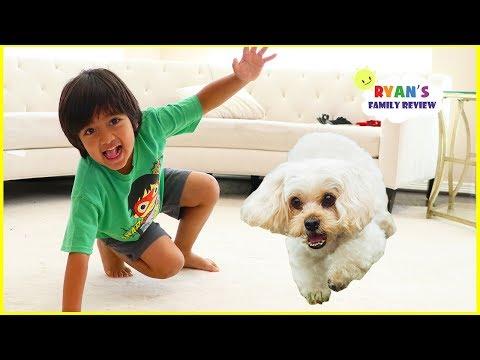 Ryan vs. Dog Racing who will win??? + Shopping for Moms Birthday!!!