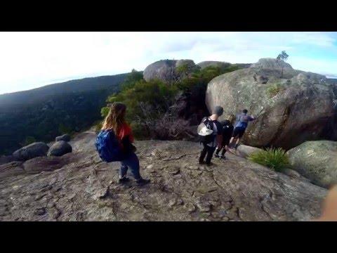Australia 2015 || UCEAP Marine Biology and Terrestrial Ecology