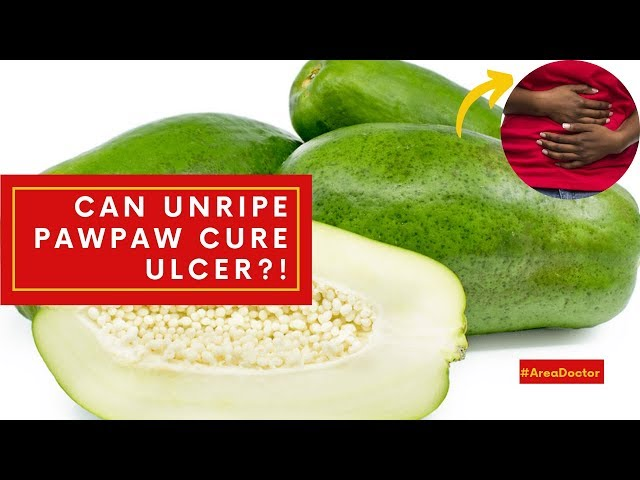 Can Unripe Pawpaw Cure Ulcer?!- #AreaDoctor (Pidgin English)