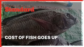 Cost of fish goes up following the rising levels of water in Lake Victoria