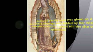 7 church approved apparitions of the blessed virgin mary