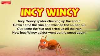 Incy Wincy Spider Nursery Rhyme for Children
