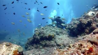 Diving in Sicily 2013