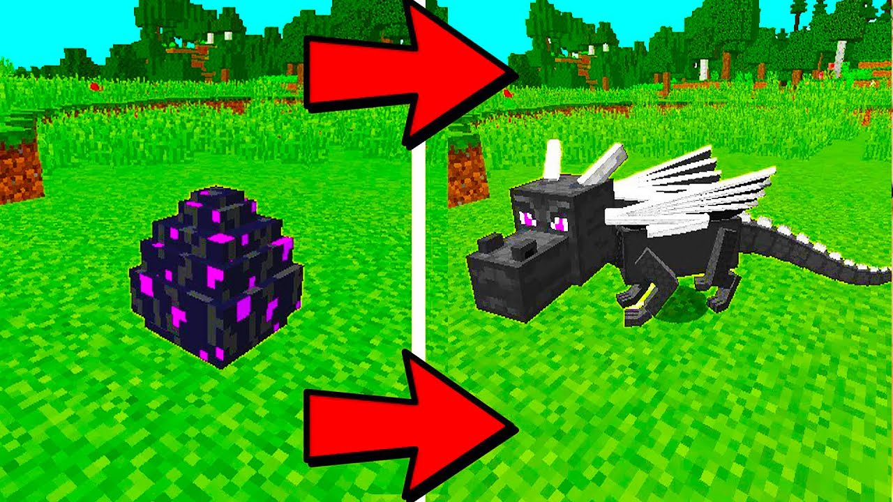 How to Hatch The Ender Dragon Egg in Minecraft | 100% Works!
