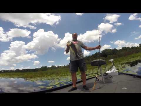 Bass Fishing Lake Lindsey July 14, 2016