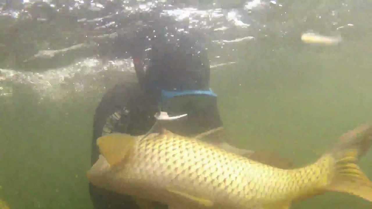 рыбная ловля на красноярском море