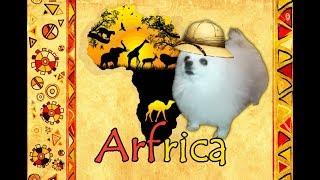 Arfrica (Toto)