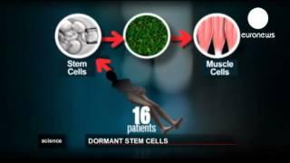 Des cellules du corps humain qui survivent à la mort
