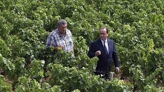 Fransa Cumhurbaşkanı Hollande'dan tarım sektörüne dayanışma çağrısı