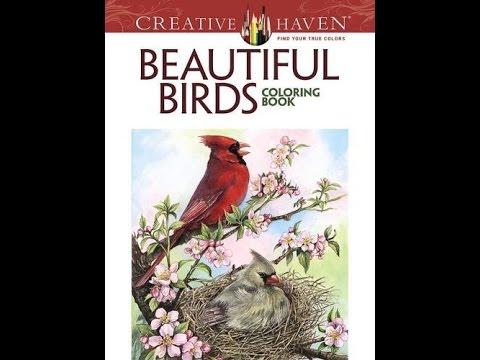 Flip Through Creative Haven Beautiful Birds Coloring Book By Dot Barlowe