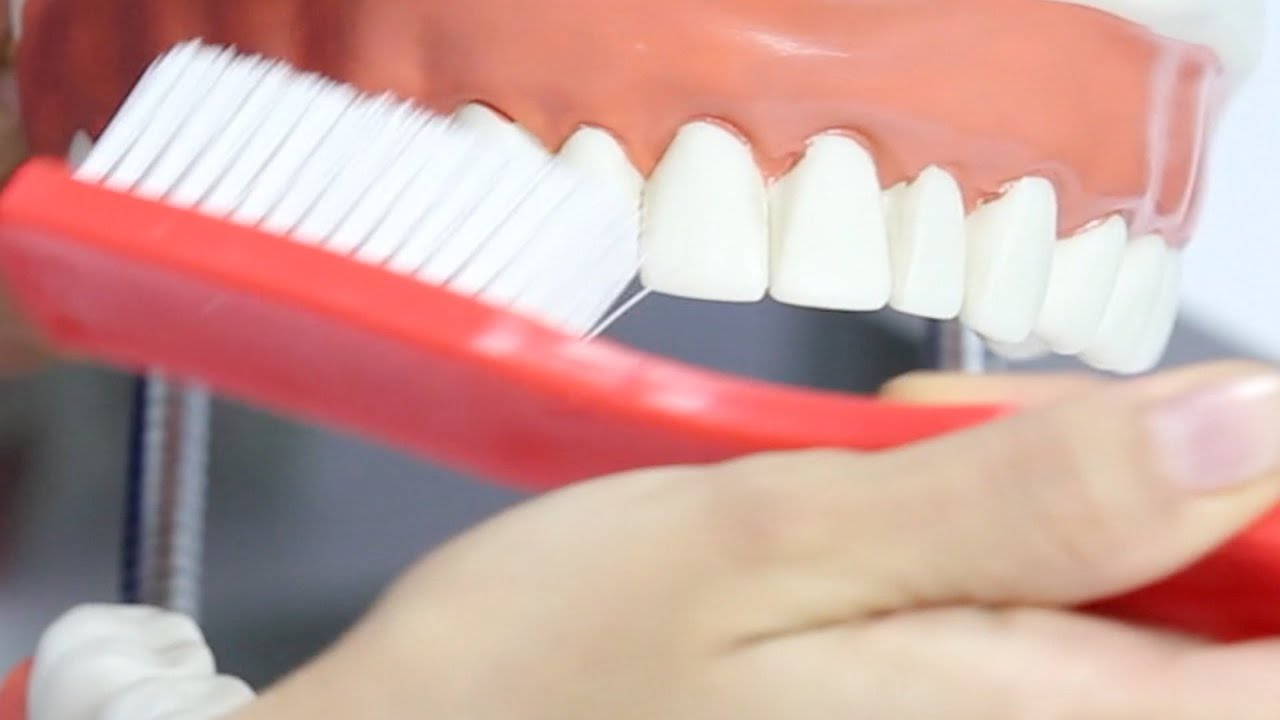 Cepillo de dientes - 3 part 8