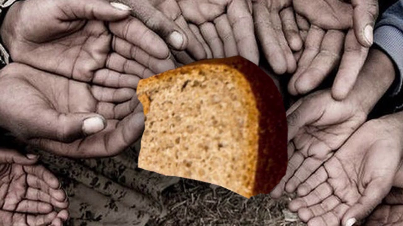 """Vjen alarmi botëror : Shqiptarët do të """"vuajnë për bukë"""""""