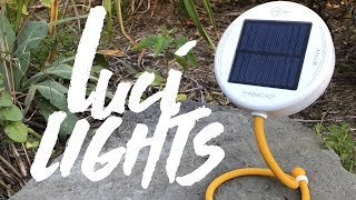 Luci Core, Base Light & Solar String Lights