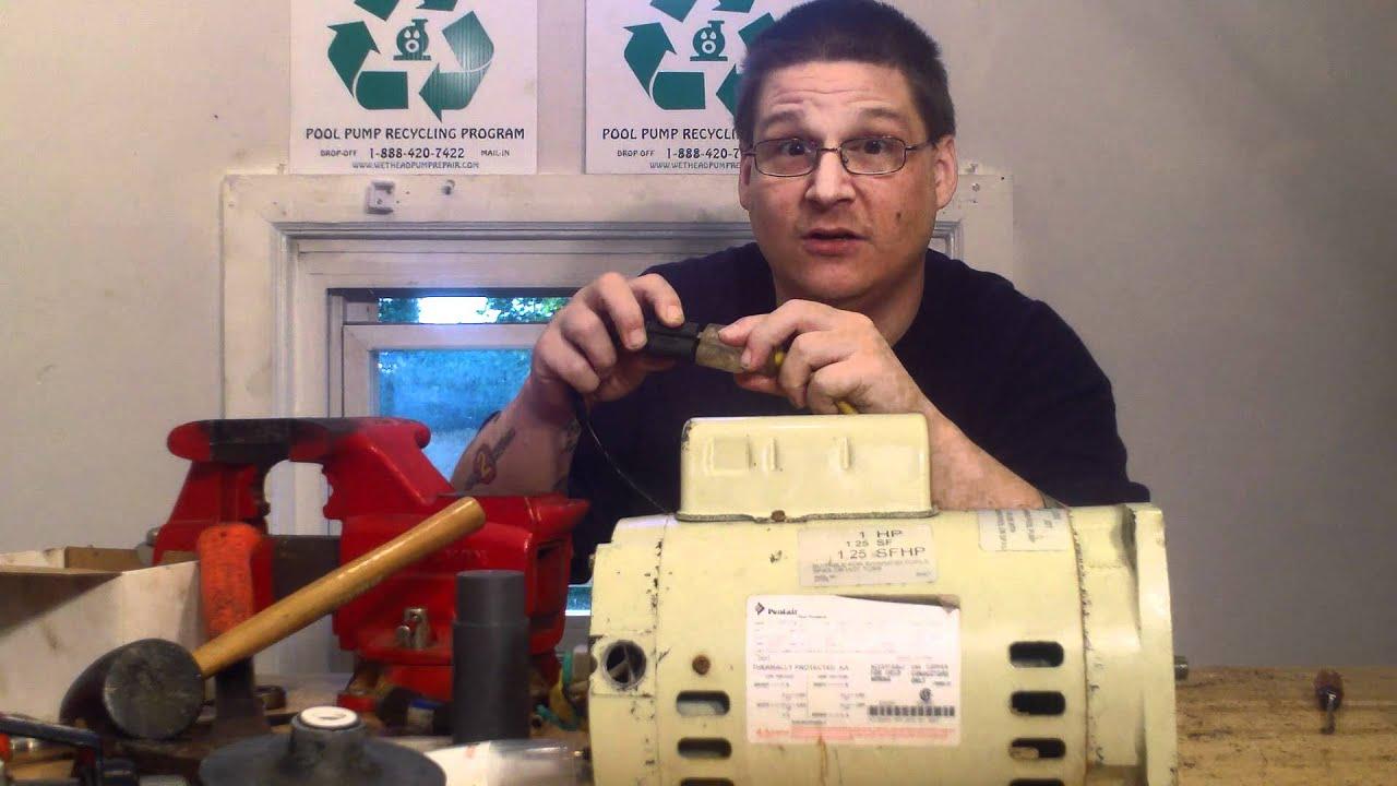 Pentair Whisperflo Pool Pump Motor Bearings Replaced