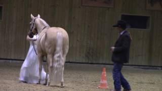 acme paris western horse show