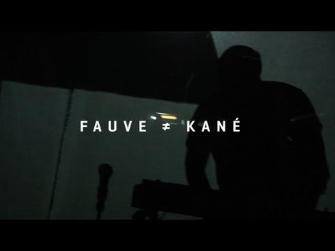 Fauve - Kané - Live (Art Rock 2013)