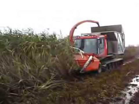 Pisten bully harvesting reed operated by ab systems uk ltd oct 13