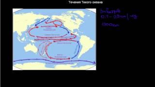 215  Течения Тихого океана