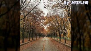 가을에 듣기좋은 락발라드 모음