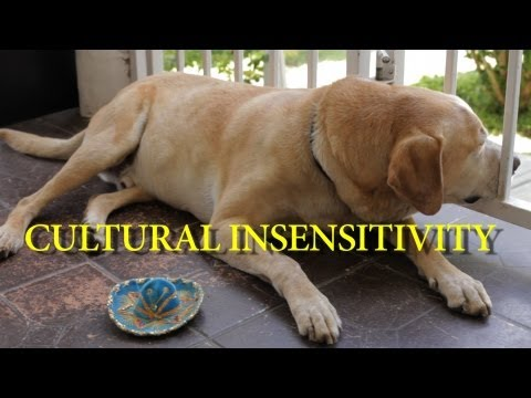 Cultural Insensitivity